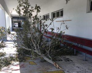 MSD sustains minimal damage from Hurricane Irma