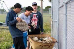 Marjory's Garden unites MSD organizations