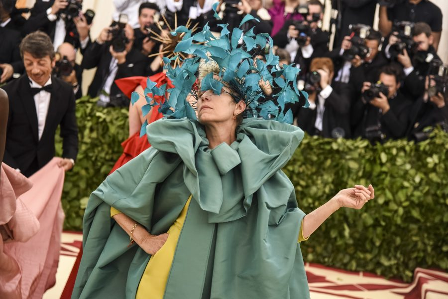 Frances McDormand attends the