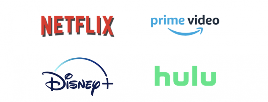 Netflix, Prime Video, Disney+ and Hulu logos.