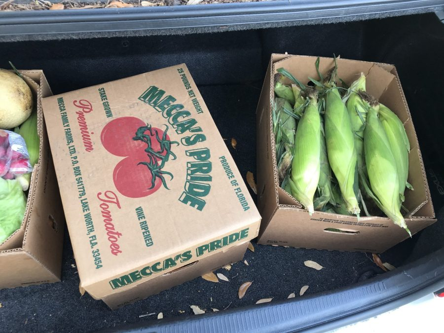 A produce box from Mecca Farms includes a variety of fresh fruits and vegetables for customers to enjoy. Photo courtesy of Melissa Falkowski