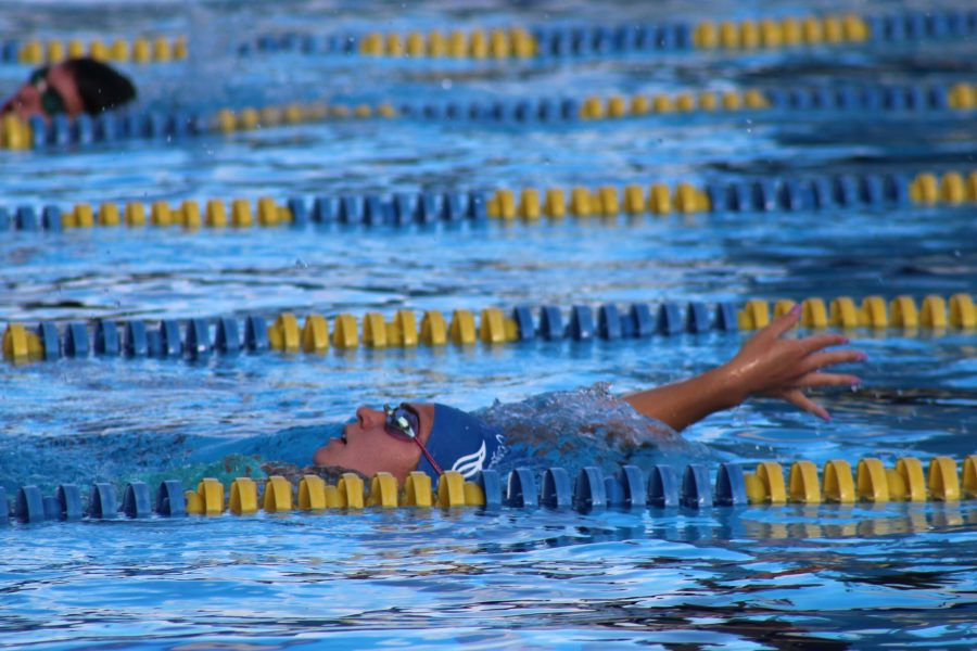 Girl swims backstroke
