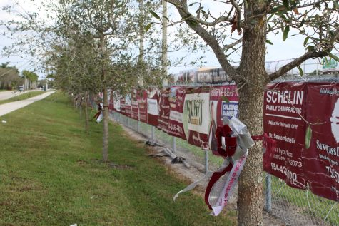 17 personalized ribbons on trees alongside of the MSD football field to honor the 17 victims