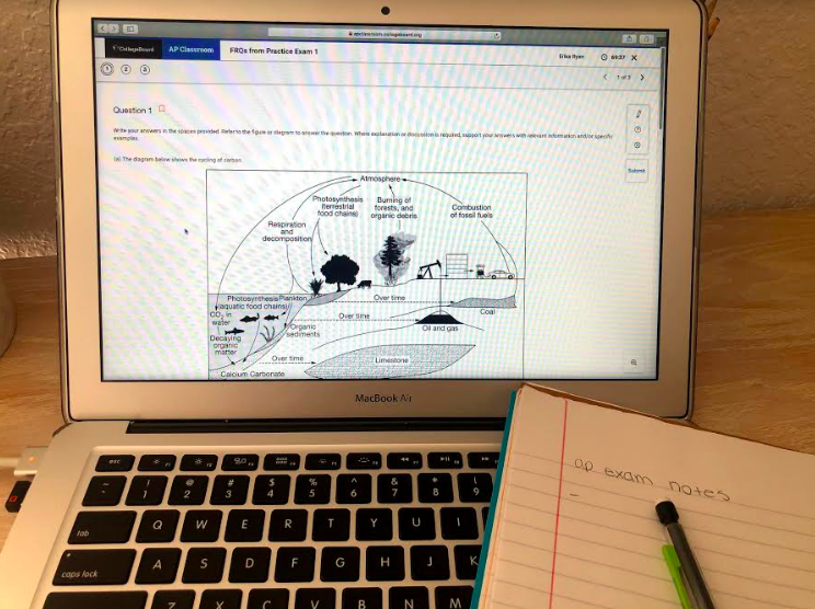 Students use practice sites such as Albert.io to prepare for exams. Photo by Erika Ryan
