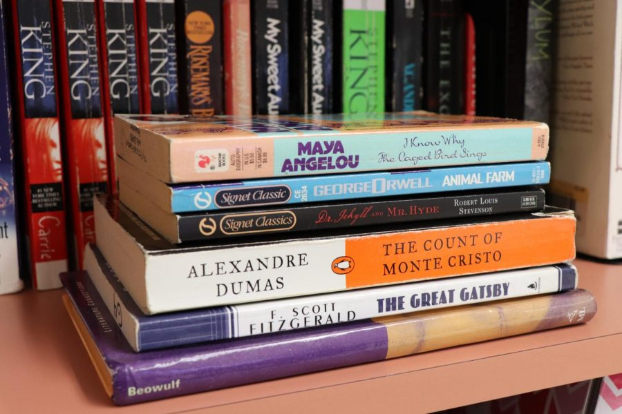 The new B.E.S.T. standards curriculum will have an increased emphasis on classic literature to improve reading skills. Photo by Rayne Welser